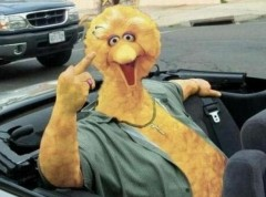 Romney Fires Big Bird